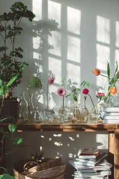 Sofia Jansson founded Mokkasin in 2009 and and freelances in photography, styling, DIY, marketing, PR and creative direction. Beautiful Flower Arrangements, Floral Arrangements, Beautiful Flowers, Bathroom Interior Design, Plant Decor, Home Decor Inspiration, Decoration, Interior And Exterior, Planting Flowers