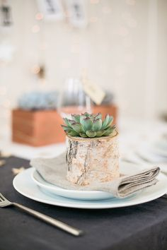 styled shoot: oh starry night {christmas inspiration} Succulent Wedding Favors, Wedding Favours, Wedding Reception, Reception Ideas, Craft Wedding, Wedding Blog, Wedding Ideas, Christmas Inspiration, Wedding Inspiration