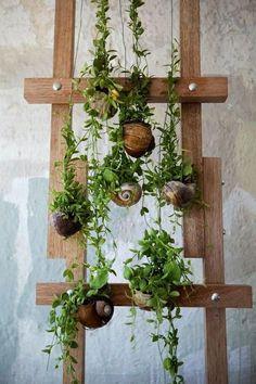 Seashell Planter, Cool Seashell Project Ideas, http://hative.com/cool-seashell-project-ideas/,