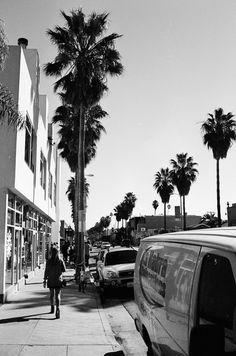 Venice / Los Angeles / Abbot Kinney