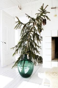 Great idea for my Demijohn~pine branch and lights for the front porch