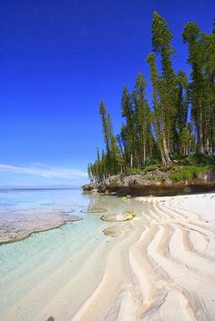Tadine, Loyaute - New Caledonia