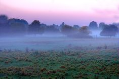 Free photo: Most, Early, Morning, Sky, Nature - Free Image on ...