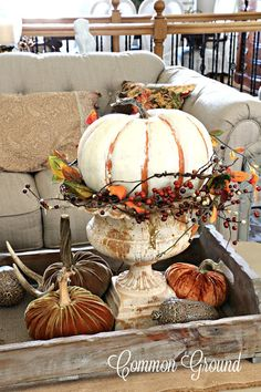 common ground : My Favorite Urn.For Fall Outside Fall Decorations, Thanksgiving Decorations, Thanksgiving Table, Christmas Tables, Holiday Tables, Pumpkin Display, Fall Arrangements, Autumn Decorating, Fall Table