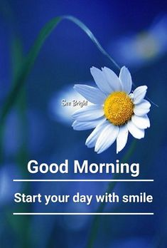 Smile and be thankful for this new day . Good Morning Today, Good Morning Cards, Morning Post, Good Morning World, Good Morning Messages, Good Morning Greetings, Good Morning Wishes, Good Morning Beautiful Pictures, Good Morning Image Quotes