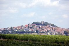 Sancerre - lovely town, refreshing wine
