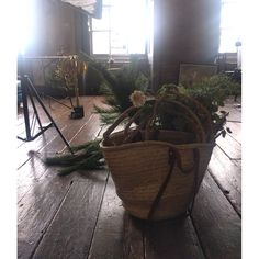 Take a sneak peek behind the scenes, on location for our Christmas 2017 catalogue photoshoot Eclectic Furniture, Unique Furniture, Christmas 2017, Behind The Scenes, Planter Pots, Photoshoot, Photo Shoot