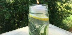 4 sencillos ingredientes pueden alejar uno de los problemas del verano