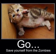 Awe. Zombies don't eat kittens...At least that is what I'm going to tell myself