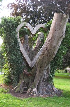 Heart-in-an-ancient-tree-stump sculpture in Bedale, North Yorkshire, England.