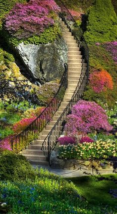 Stairway to Heaven. Butchart Gardens in Brentwood Bay (near Victoria) on Vancouver Island in British Columbia, Canada Stairway To Heaven, Beautiful World, Beautiful Places, Beautiful Stairs, Beautiful Flowers, Beautiful Scenery, Prettiest Flowers, Beautiful Beach, The Places Youll Go