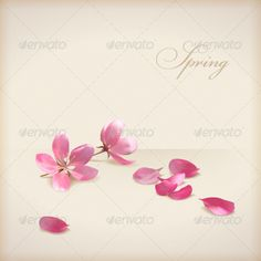 Cherry Blossom Flowers  #GraphicRiver         Pink flowers, freshly fallen petals and text 'Spring' on a beige background in modern style. Can be used as wedding, greeting or invitation card.   Package details:   EPS 10 vector illustration. Image contains transparency and blending modes. Gradient mesh used. Text design is based on standard Bickham Script Pro font. The text is not editable because the alternative characters were used   Hi-res 300 dpi JPG, 3000px x 3000px     Created…