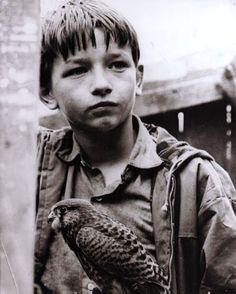 Still from the film Kes, A young, English working-class boy ( David Bradley ) spends his free time caring for and training his pet falcon. Classic Books, Classic Films, 60s Films, My Childhood Memories, Film Stills, Great Movies, Film Movie, Nostalgia, The Past