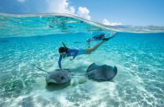 When on your own private island, it is encouraged to go native. #HalfMoonCay http://bit.ly/1mVV3rs
