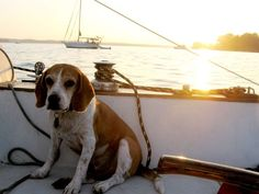 Photograph by Katie Parker
