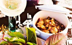 Tattiserpa / Mushrooms / Kotiliesi.fi / Kuva/Photo: Sampo Korhonen/Otavamedia