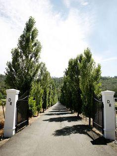 Durham Ranch. Paula LeDuc Fine Catering.  Entrance. Tree lined.  Wedding Venue.