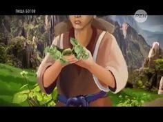 Листья хрена – единственные из растений, способные вытягивать соль через поры кожи. Обсуждение на LiveInternet - Российский Сервис Онлайн-Дневников
