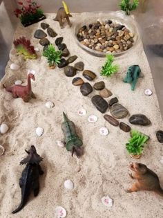 dinosaur Trendy camping activities for toddlers sensory bins Ideas Trendy Camping-Aktivitten fr Kleinkinder sensorische Mlleimer Ideen Dinosaur Theme Preschool, Dinosaur Activities, Camping Activities, Toddler Activities, Dinosaur Dinosaur, Dinosaur Projects, Camping Snacks, Toddler Sensory Bins, Toddler Fun
