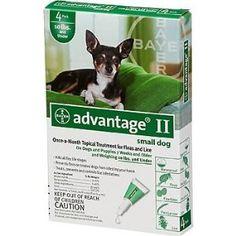 Bayer Advantage II Green 4-Month Flea Control for Dogs 0-10 lbs. --- http://www.pinterest.com.itshot.me/3u