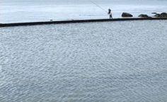 Pesca no Tejo