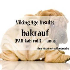 """OP """"This one makes me giggle"""" - Viking Insults (Apologies to all the sharpeis out there....)"""