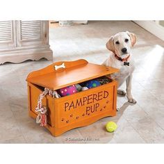 Wooden Dog Toy Storage Box Exported To The