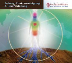 MFL®-Erdungs-CD - Morphisches Feld lesen...