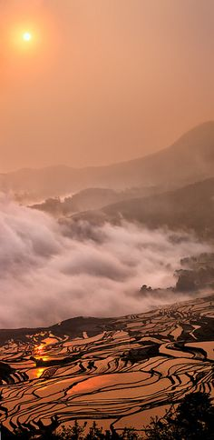Sunrise over rice terrace, Yuanyang, China by William Yu