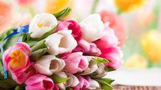 """🌺С праздником весны, милые девочки, девушки, женщины! 🌹 🌼С Международным женским днём! 🌻Любите, мечтайте, вдохновляйте! Каждое мгновение весны – скоротечно, но очаровательно прекрасно! И в этом удивительном весеннем очаровании, коллектив компании """"СтильПро"""" желает Вам познать самые яркие, волшебные моменты жизни, обретя новую и лучшую себя! С праздником!"""