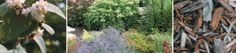 Watering basics for a yard smart yard Water Wise, Smart Water, Water Garden, Lawn And Garden, Outdoor Gardens, Indoor Outdoor, Drought Tolerant Plants, Water Conservation, Lawn Care