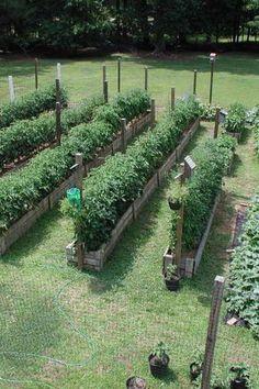fogyás victoria kertek