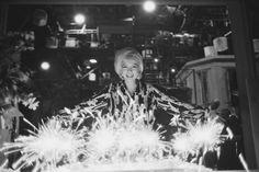Marilyn Monroe by George Barris-1st June 1962-36 birthday