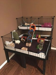 trendy ideas for pet store ideas guinea pigs - Pin Hairs Guinea Pig Hutch, Guinea Pig House, Pet Guinea Pigs, Guinea Pig Care, Indoor Guinea Pig Cage, Guinie Pig, Pig Habitat, Bunny Cages, Small Animal Cage