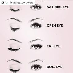 Had to repost because we LOVE this! which look is your favorite?? ✨ #lashextensions #lashwrap #lashartist #Repost @flylashes_borboleta with @repostapp ・・・ Doll EYE FOR ME !!!! all the way what's yours ! Cuales son las tuyas?! #flylashesbynicole #borboletaeducator #lashartist #lashaddict #borboletabeauty