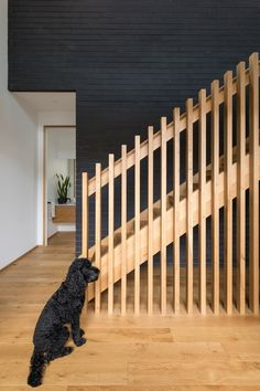 The wooden flooring contrasting with the black doggo and black brick create a beautiful space. Black Brick, Wooden Flooring, Beautiful Space, Large Dogs, Interior Design, Create, Projects, Inspiration, Home Decor
