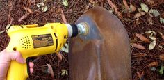 How to Clean, Sharpen, and Maintain Garden Tools class=