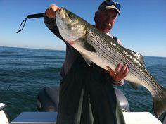 2014 Fire Island Striped Bass fishing getting underway