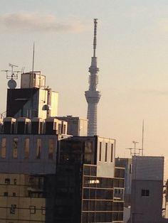 晴れ、気温3℃。2014年1月20日
