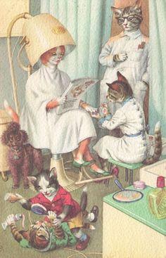 humanized dressed animals alfred mainzer cat cats hairdresser salon