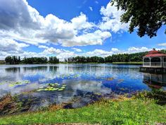 Tampa estate rental - Lake view with Dock/Screened Gazebo on right