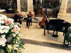 Música Bodas Albacete, Cuenca y Murcia. Catedral Albacete, Julio 2016  Músicos profesionales  gdbodas@hotmail.com www.gdbodas.net 670666472