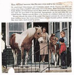 Misty of Chincoteague and filly Stormy survive the the Ash Wednesday Storm of 1962.