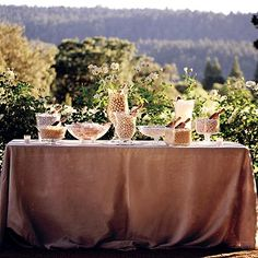 Candy buffet...love the burlap in this natural setting.