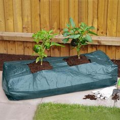 Grow Your Own- Vegetable Grow Bag an easy way to 5 a day?