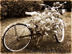 Vintage Bike Planter rustic photography country by Jemvistaprint, $25.00