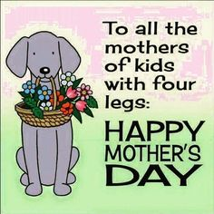 To all the mothers of kids with four legs.Happy Mother's Day cat mom mothers day dog mother quotes mom quotes happy mother's day mother's day mother greetings flowers for mother mother graphics. Happy Mothers Day Friend, Happy Mothers Day Pictures, Happy Mother Day Quotes, Mother Day Wishes, Happy Mother S Day, Mothers Day From Dog, Mother Mother, Mother Quotes, Happy Quotes
