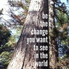 be the change you want to see in the world.    #quote #motto #tree #vienna #botanic #garden #austria