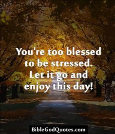 You're too blessed to be stressed. Let it go and enjoy this day!  ► Click here for more: BibleGodQuotes.com