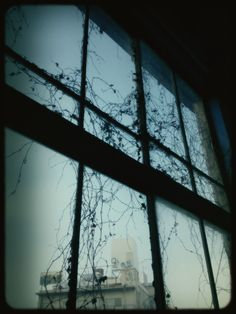 @harmomonic  Photo: 冬枯れの景色。夏は青々とした葉でいっぱいに。 #シモチカ tmblr.co/ZIyjusg4_Xya